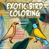 Игра Раскраска экзотических птиц