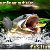 Игра Рыбалка в заводи