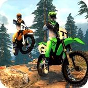 Игра Внедорожный заезд на мотоцикле