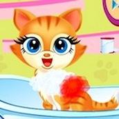 Игра Мыть котят и заботится о них
