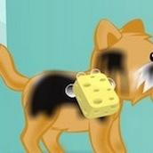 Игра Мыть собак и наряжать их