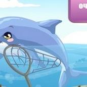 Игра Уход за дельфинами