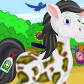 Игра Приведи в порядок милую лошадку