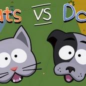 Кошки против собак Ио