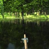 Игра Рыбалка на заре