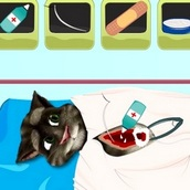 Говорящий кот Том: Операция