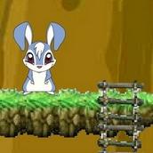 Игра Кролик Кико в поисках морковки